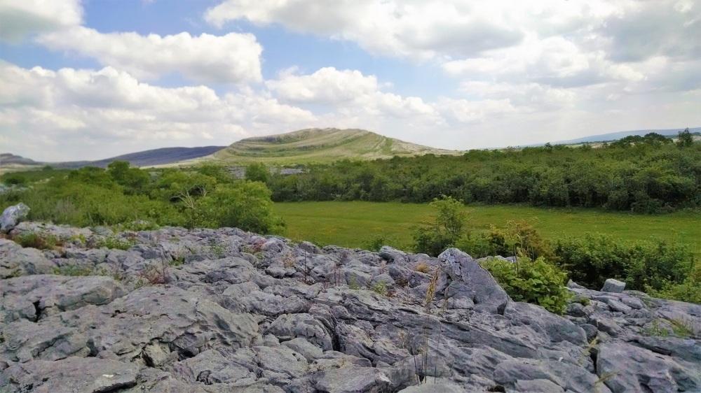 Burren national Park on rocks2