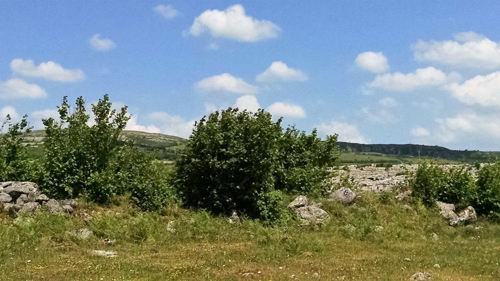 Burren National Park2